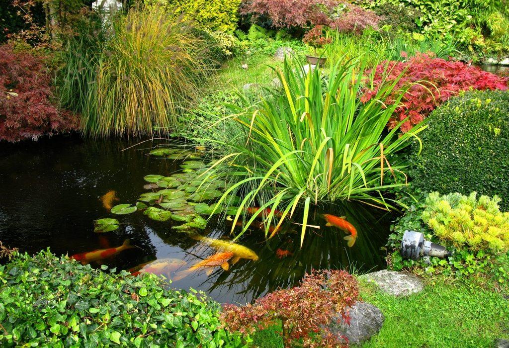 Quels sont les avantages du bassin préformé ?