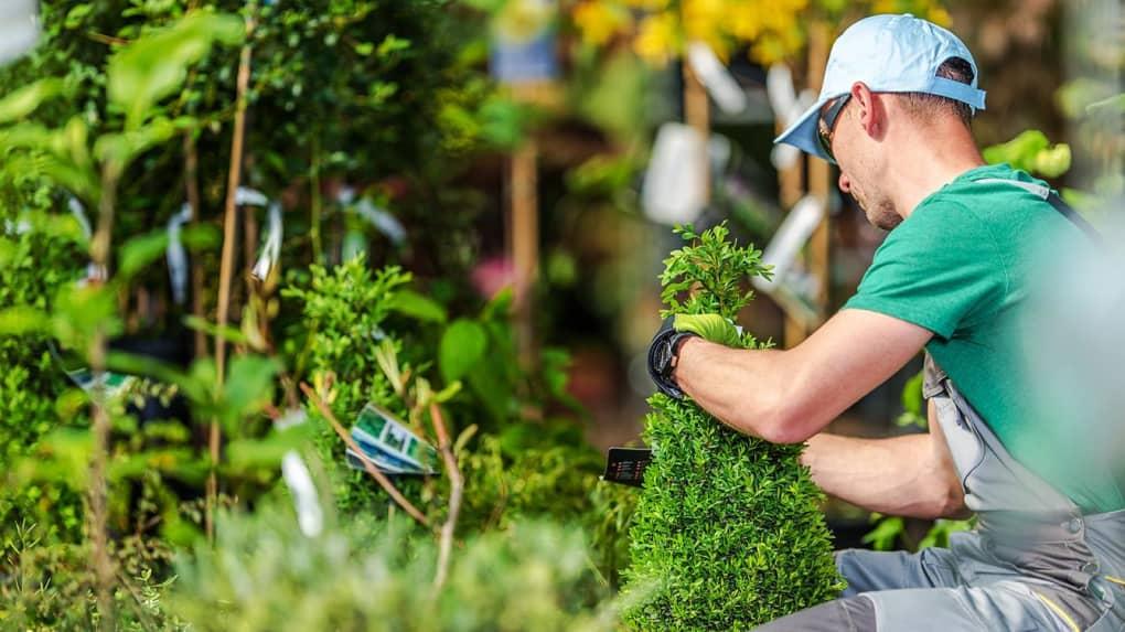 Choisir son paysagiste: comment ne pas se tromper?